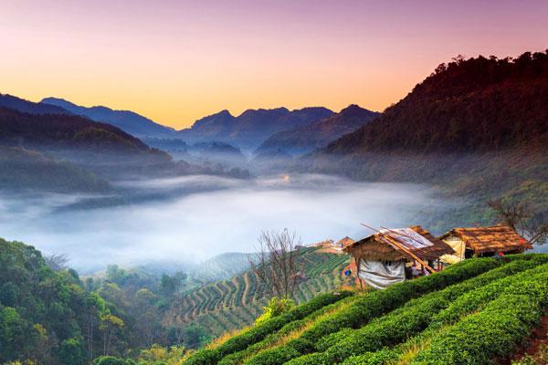Vẻ đẹp yên bình của Chiang Mai